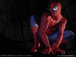 3d-spiderman-wallpaper